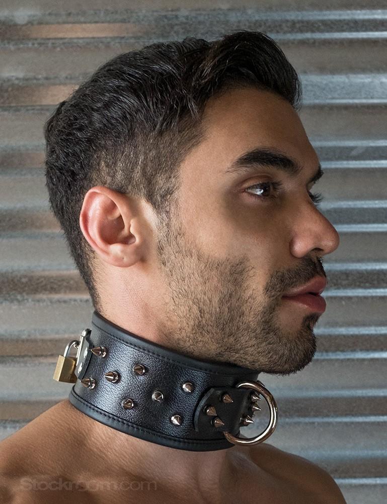 human dog collar